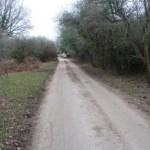 Ogdens Lane