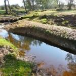 Shifting gravel banks
